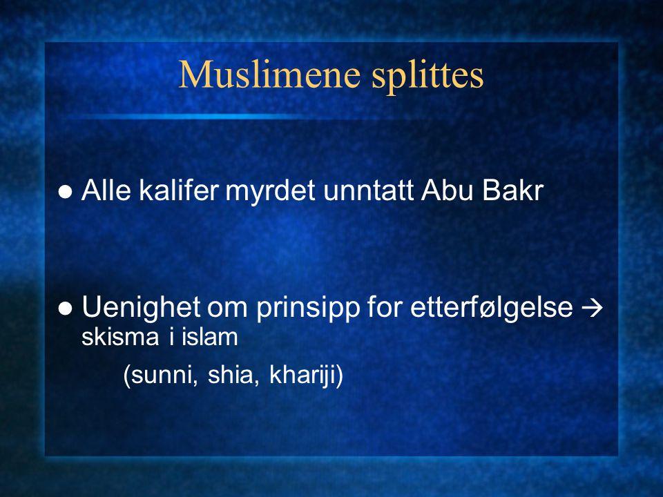 Muslimene splittes Alle kalifer myrdet unntatt Abu Bakr