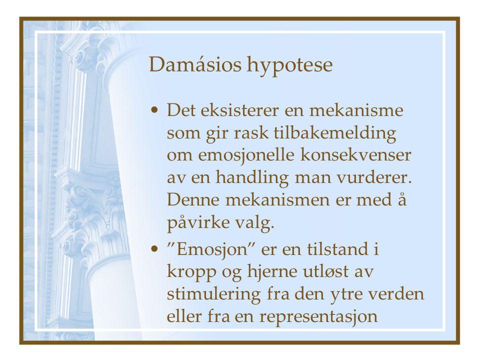 Damásios hypotese
