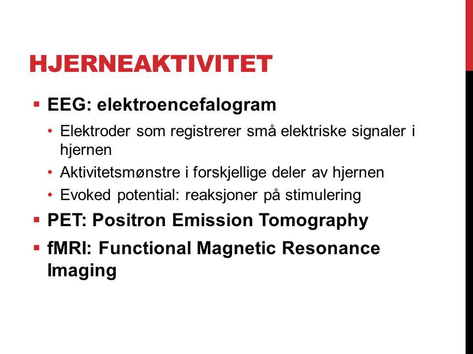 Hjerneaktivitet EEG: elektroencefalogram