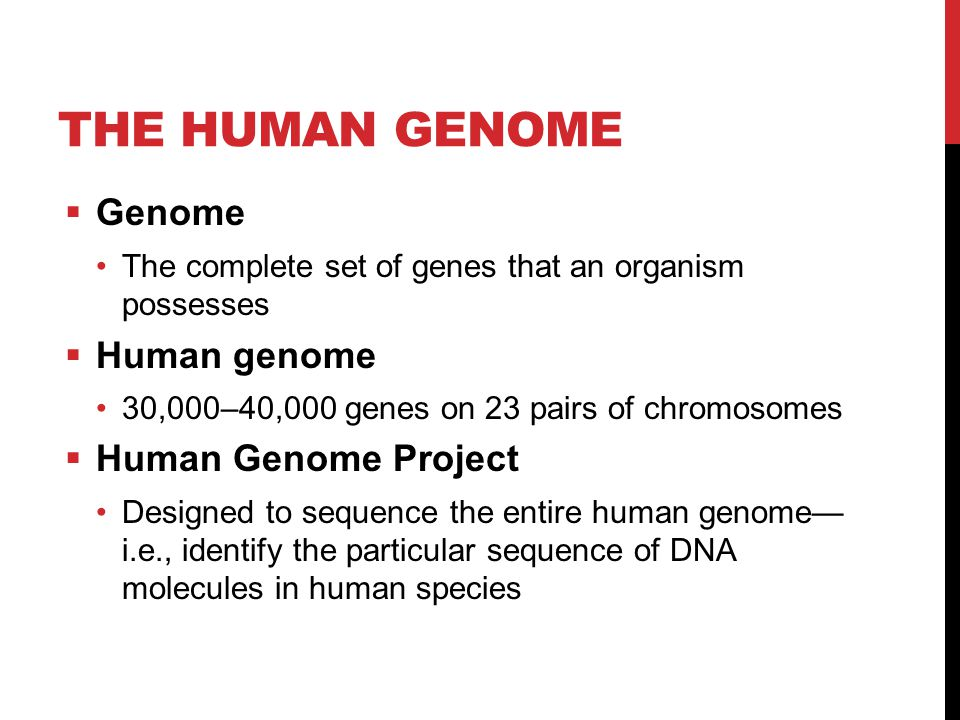 The Human Genome Genome Human genome Human Genome Project