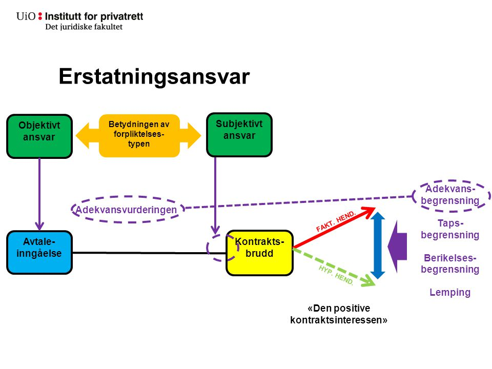 Betydningen av forpliktelses-typen «Den positive kontraktsinteressen»