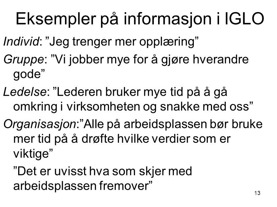Eksempler på informasjon i IGLO