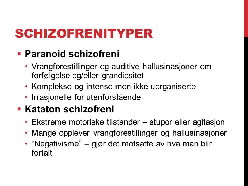 Schizofrenityper Paranoid schizofreni Kataton schizofreni