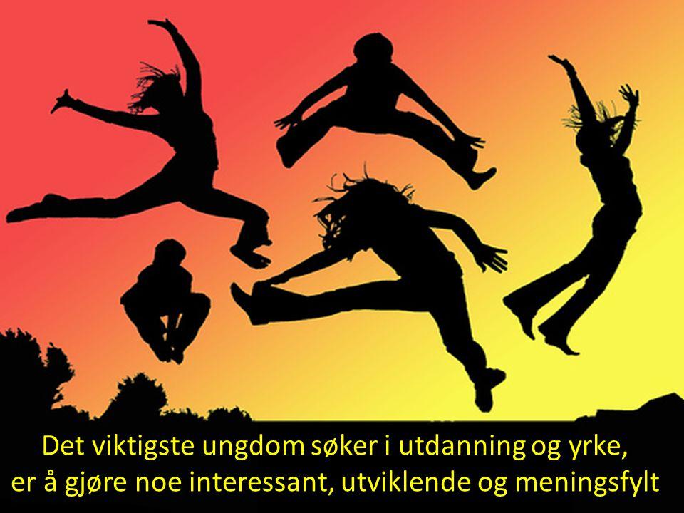 Det viktigste ungdom søker i utdanning og yrke, er å gjøre noe interessant, utviklende og meningsfylt