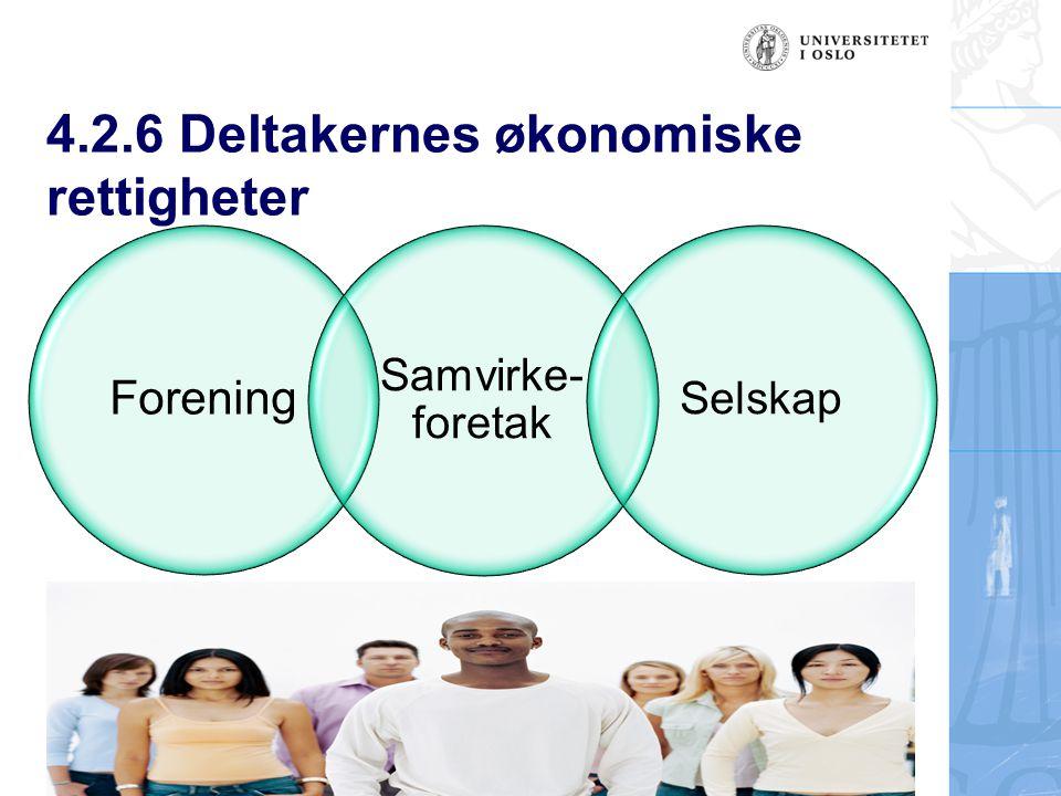 4.2.6 Deltakernes økonomiske rettigheter