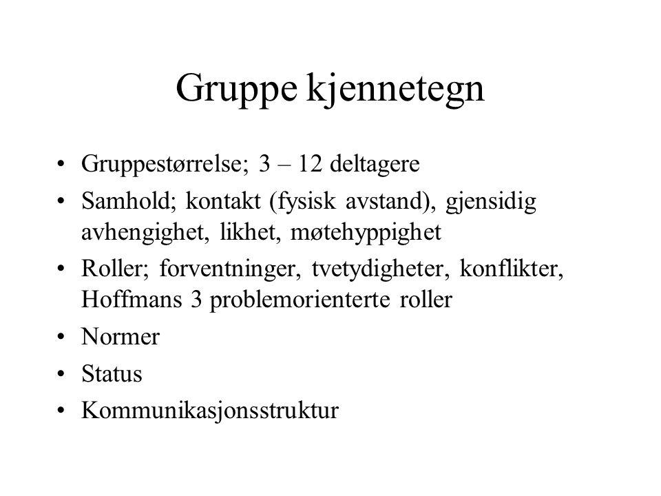 Gruppe kjennetegn Gruppestørrelse; 3 – 12 deltagere
