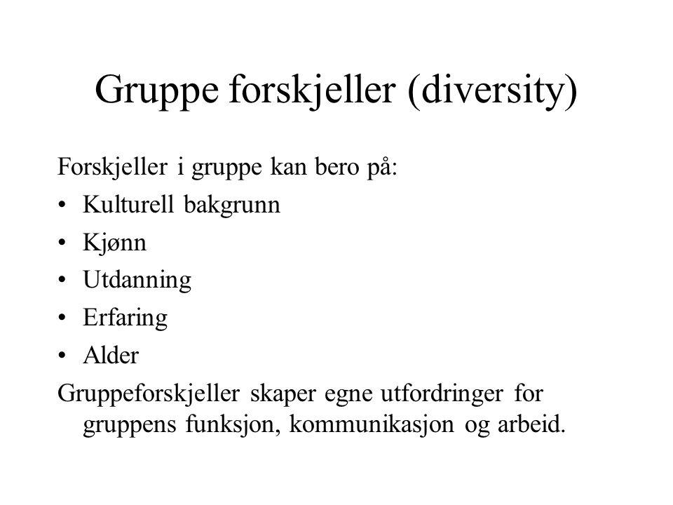 Gruppe forskjeller (diversity)