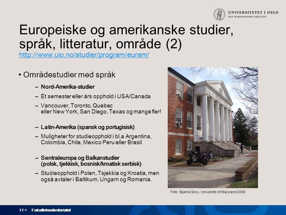 Europeiske og amerikanske studier, språk, litteratur, område (2)