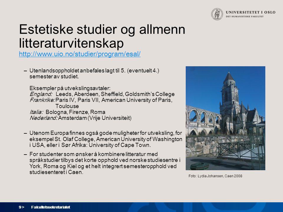 Estetiske studier og allmenn litteraturvitenskap