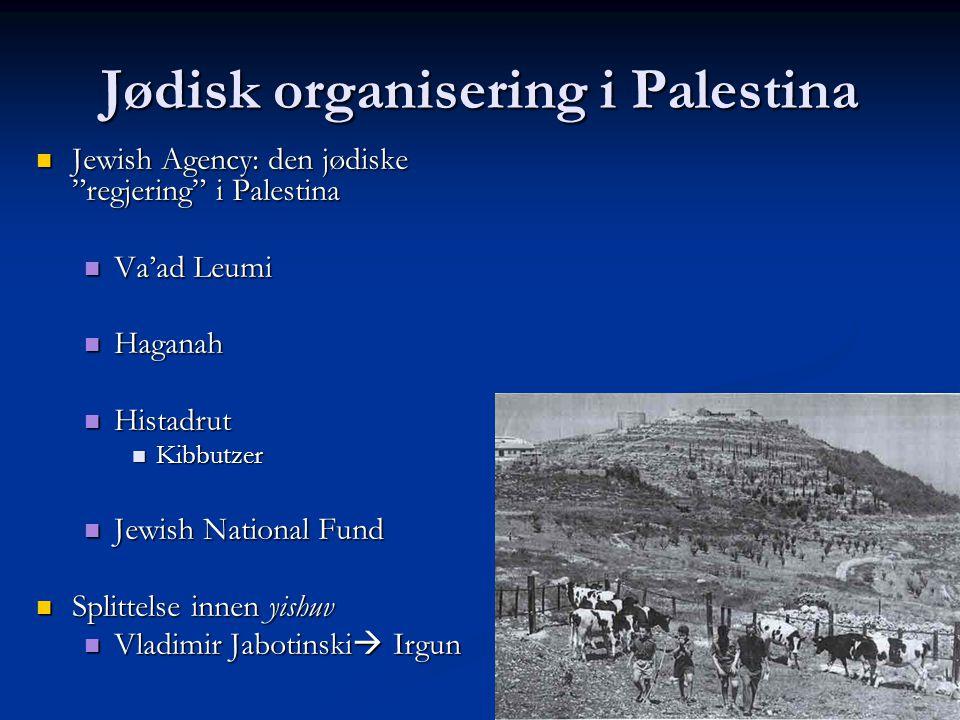 Jødisk organisering i Palestina