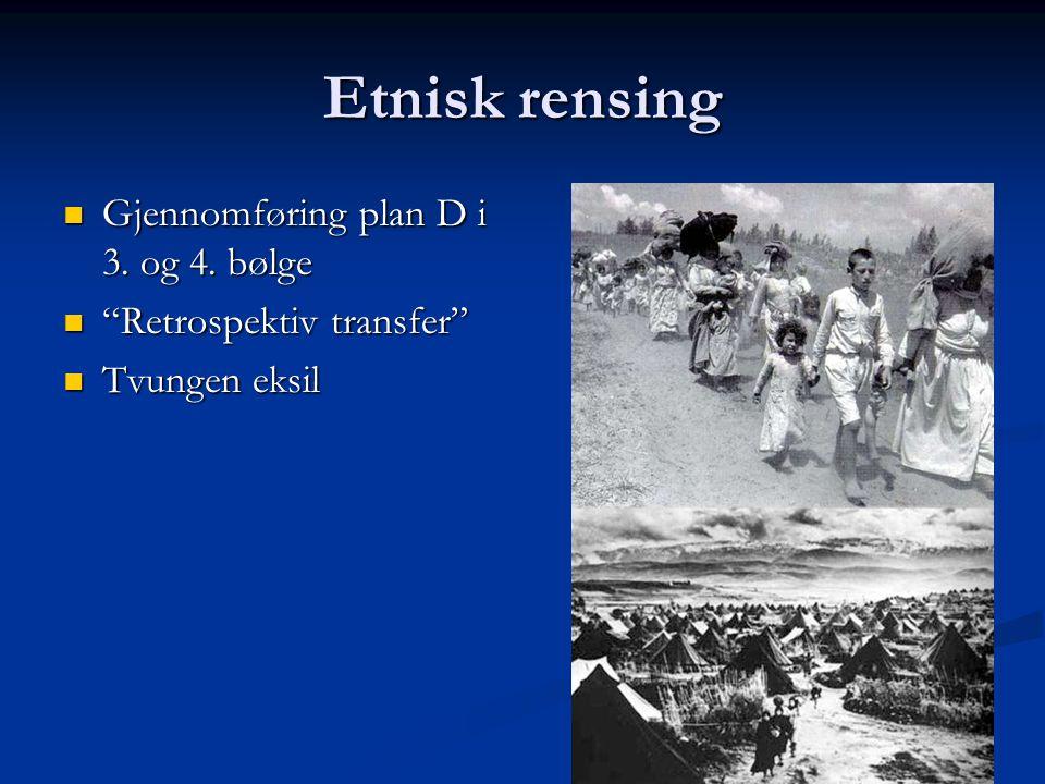 Etnisk rensing Gjennomføring plan D i 3. og 4. bølge