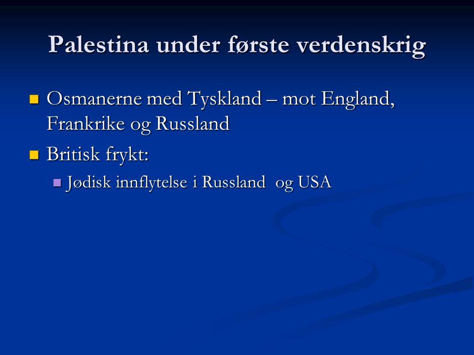 Palestina under første verdenskrig