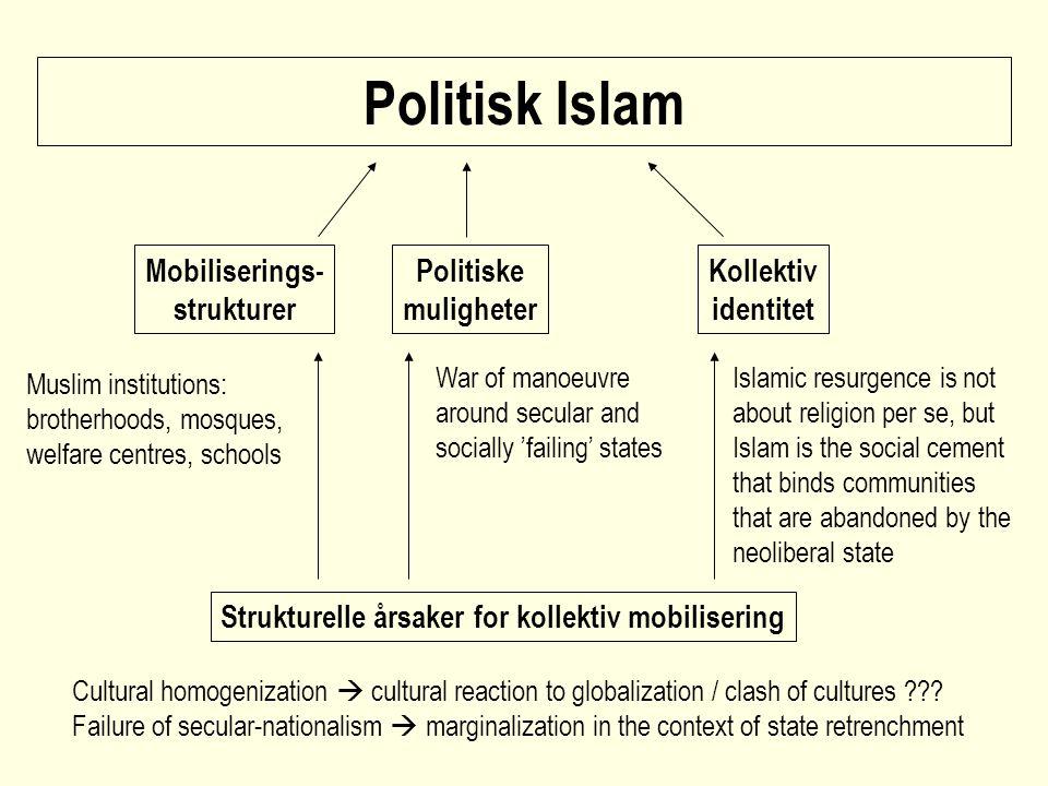 Strukturelle årsaker for kollektiv mobilisering