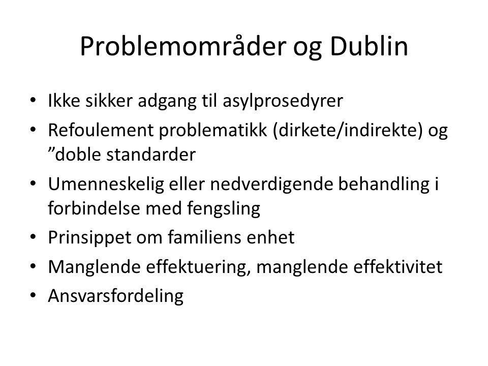 Problemområder og Dublin