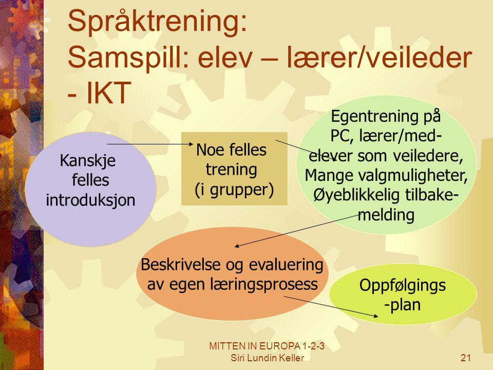Språktrening: Samspill: elev – lærer/veileder - IKT