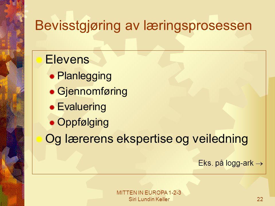 Bevisstgjøring av læringsprosessen