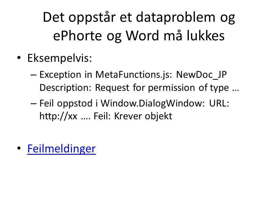Det oppstår et dataproblem og ePhorte og Word må lukkes
