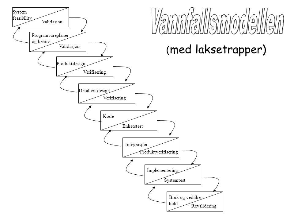 Vannfallsmodellen (med laksetrapper) System feasibility Validasjon