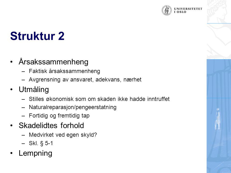 Struktur 2 Årsakssammenheng Utmåling Skadelidtes forhold Lempning