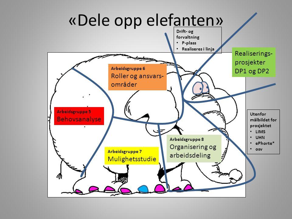«Dele opp elefanten» Realiserings- prosjekter DP1 og DP2
