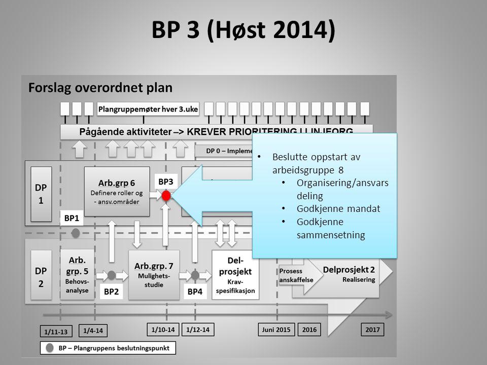 BP 3 (Høst 2014) Beslutte oppstart av arbeidsgruppe 8