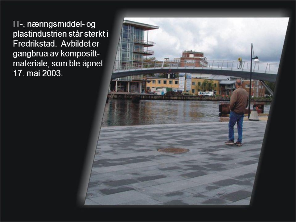 IT-, næringsmiddel- og plastindustrien står sterkt i Fredrikstad