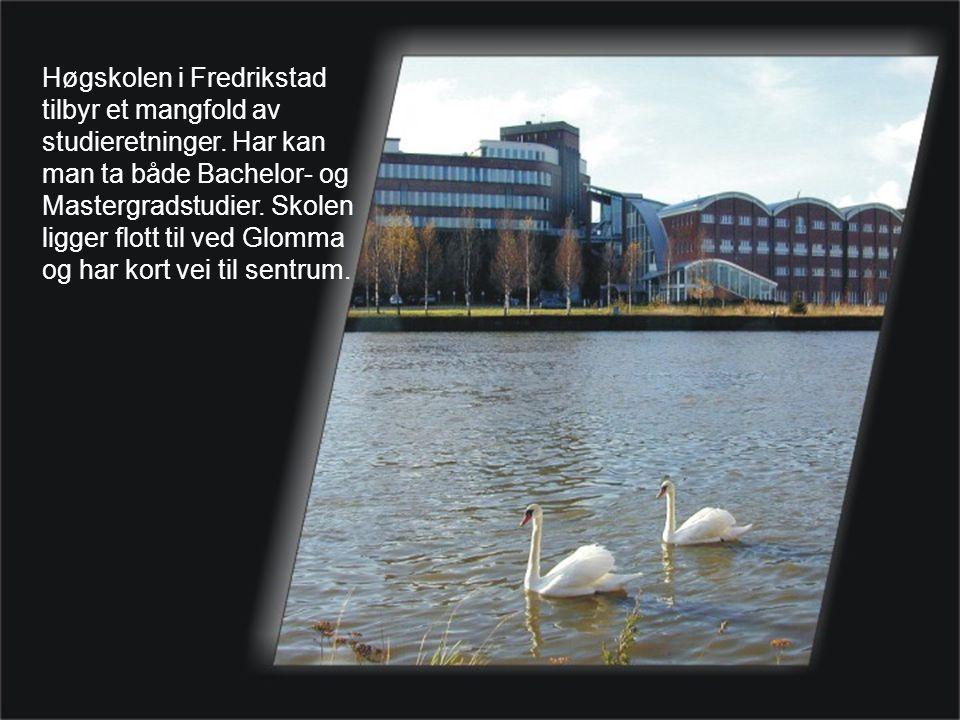 Høgskolen i Fredrikstad tilbyr et mangfold av studieretninger