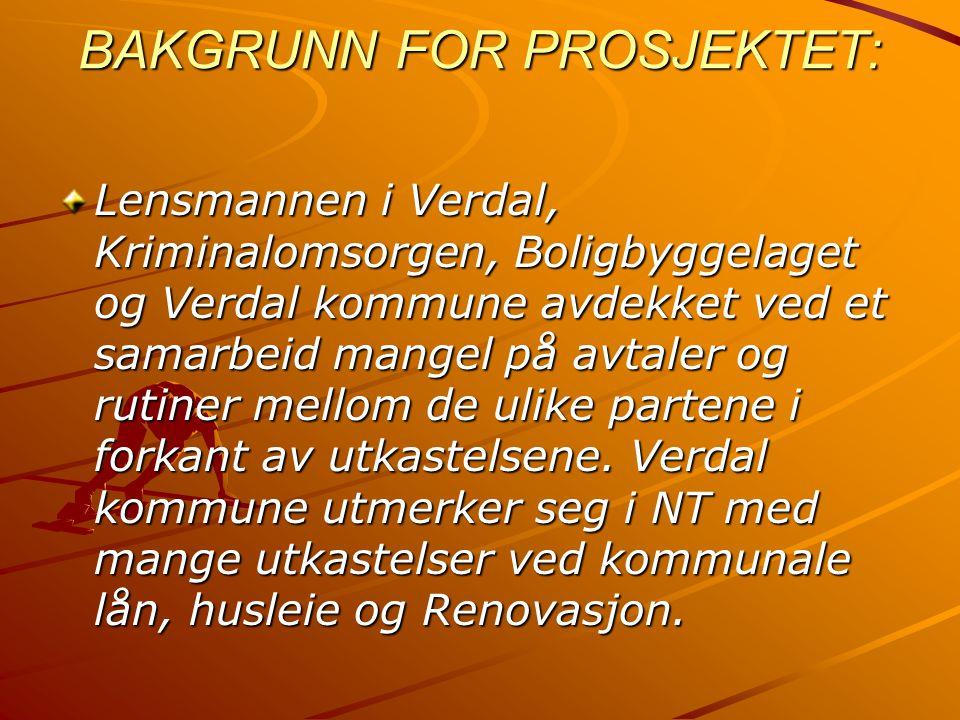 BAKGRUNN FOR PROSJEKTET: