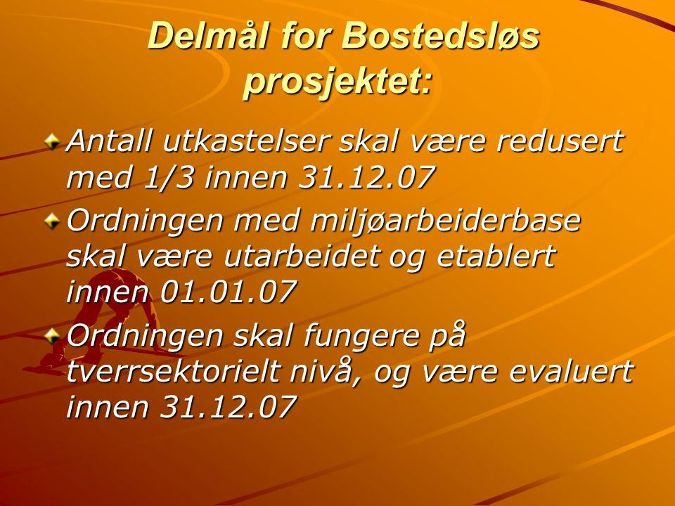 Delmål for Bostedsløs prosjektet:
