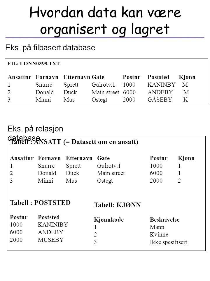 Hvordan data kan være organisert og lagret
