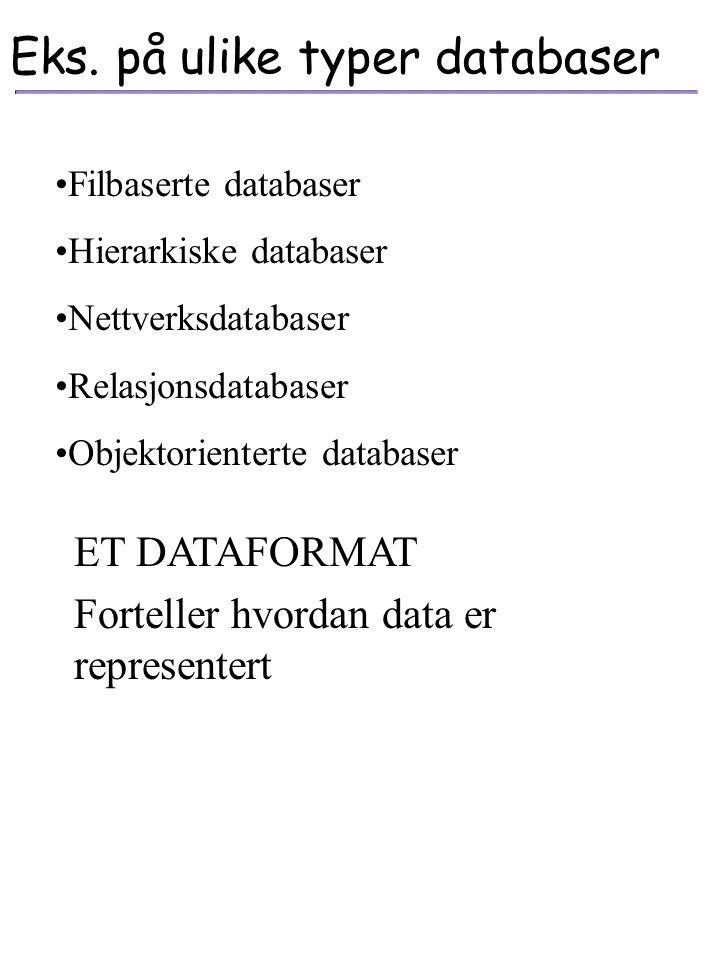 Eks. på ulike typer databaser