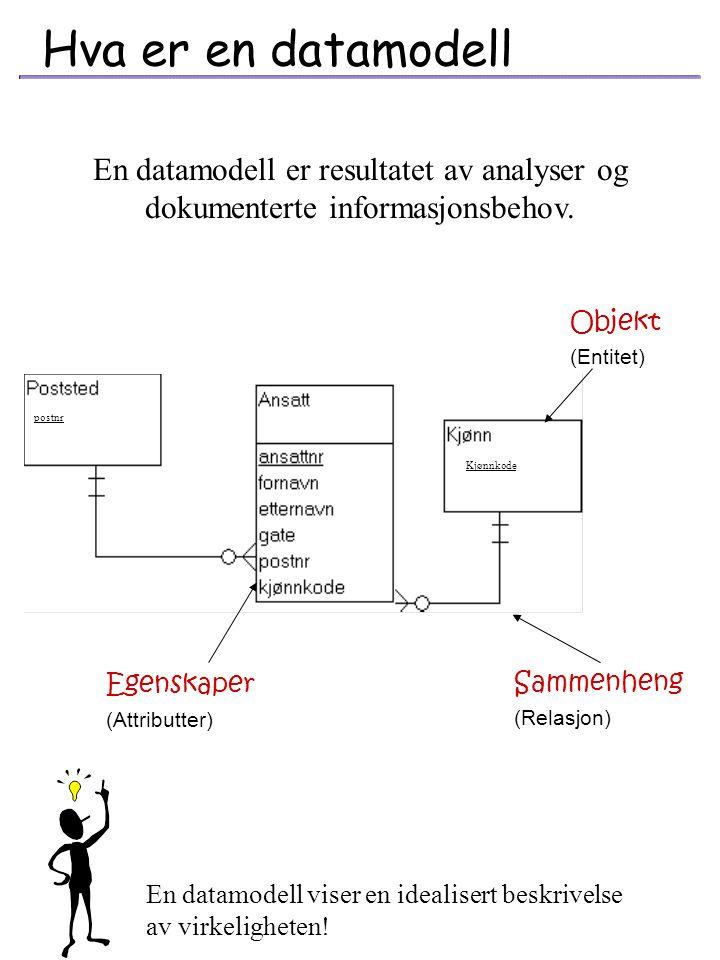 Hva er en datamodell En datamodell er resultatet av analyser og dokumenterte informasjonsbehov. Objekt.