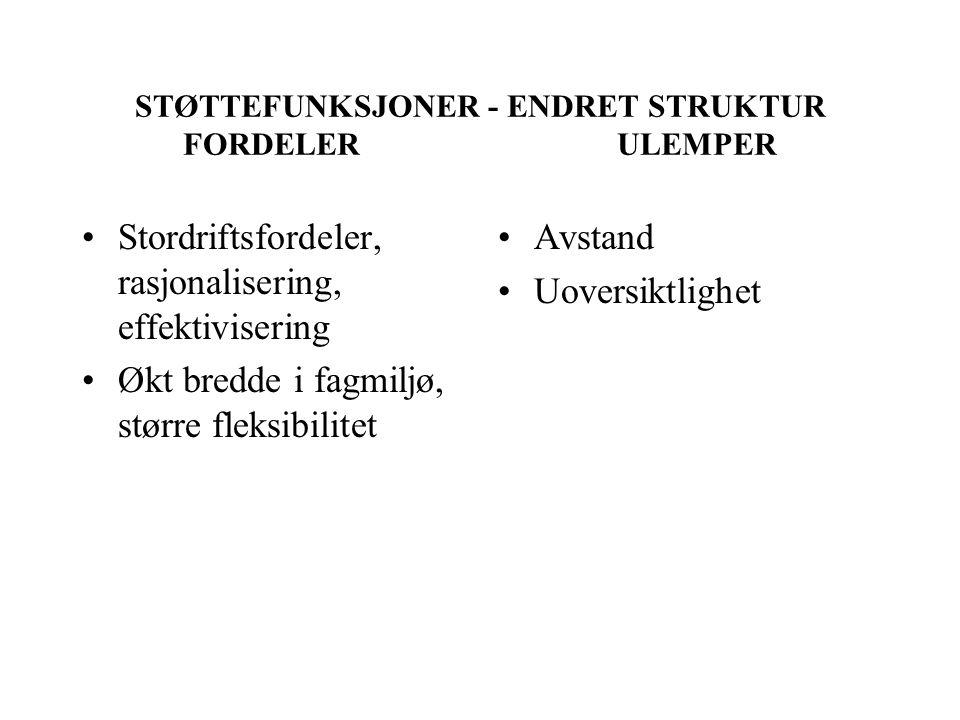 STØTTEFUNKSJONER - ENDRET STRUKTUR FORDELER ULEMPER