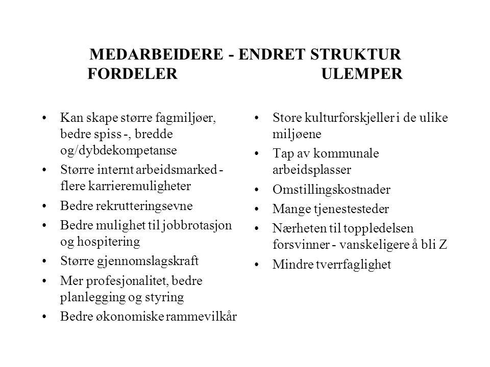 MEDARBEIDERE - ENDRET STRUKTUR FORDELER ULEMPER