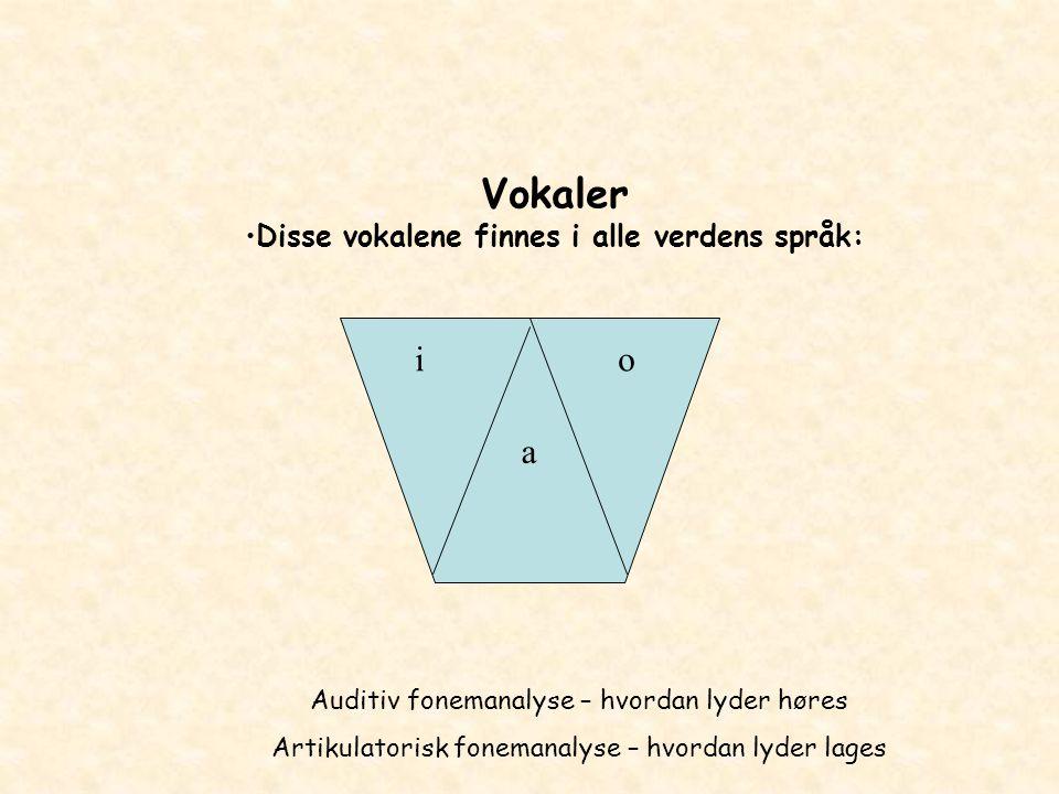 Disse vokalene finnes i alle verdens språk: