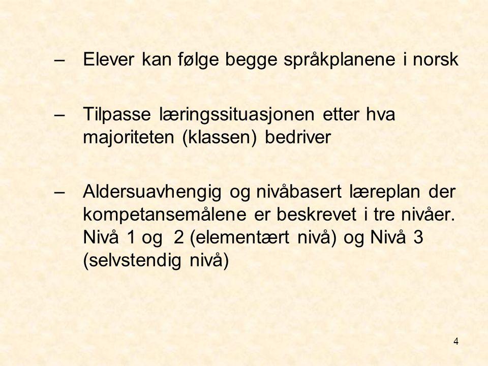 Elever kan følge begge språkplanene i norsk