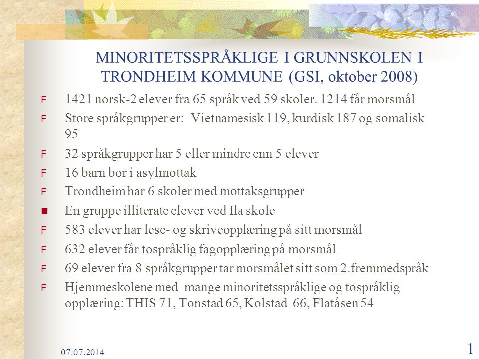 MINORITETSSPRÅKLIGE I GRUNNSKOLEN I TRONDHEIM KOMMUNE (GSI, oktober 2008)