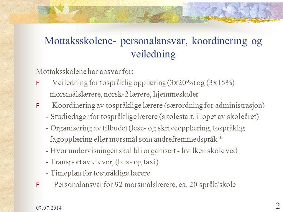 Mottaksskolene- personalansvar, koordinering og veiledning