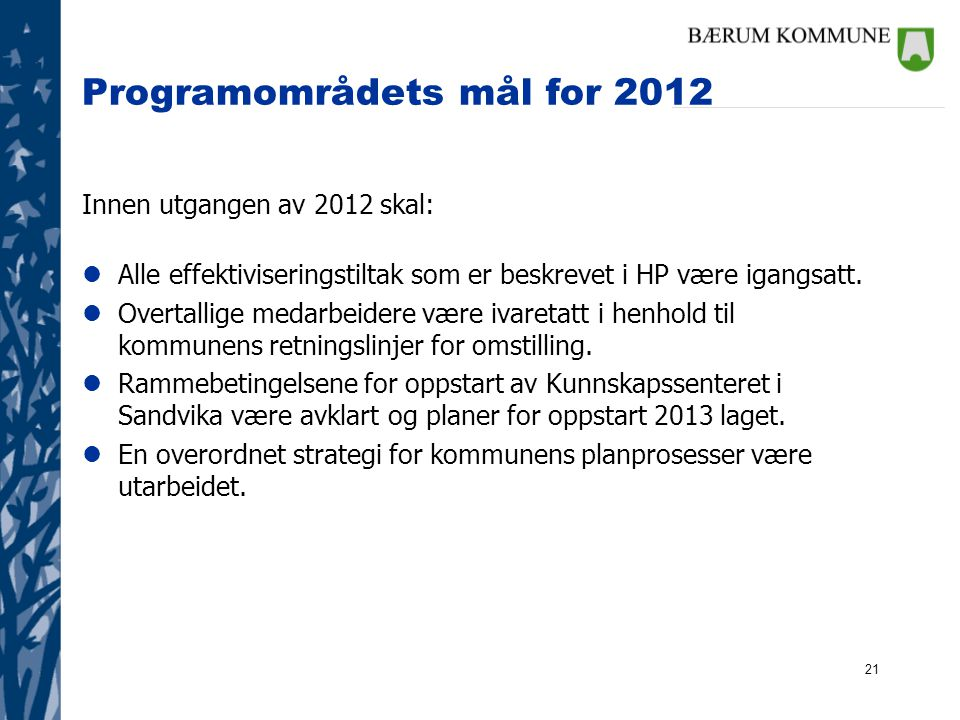 Programområdets mål for 2012
