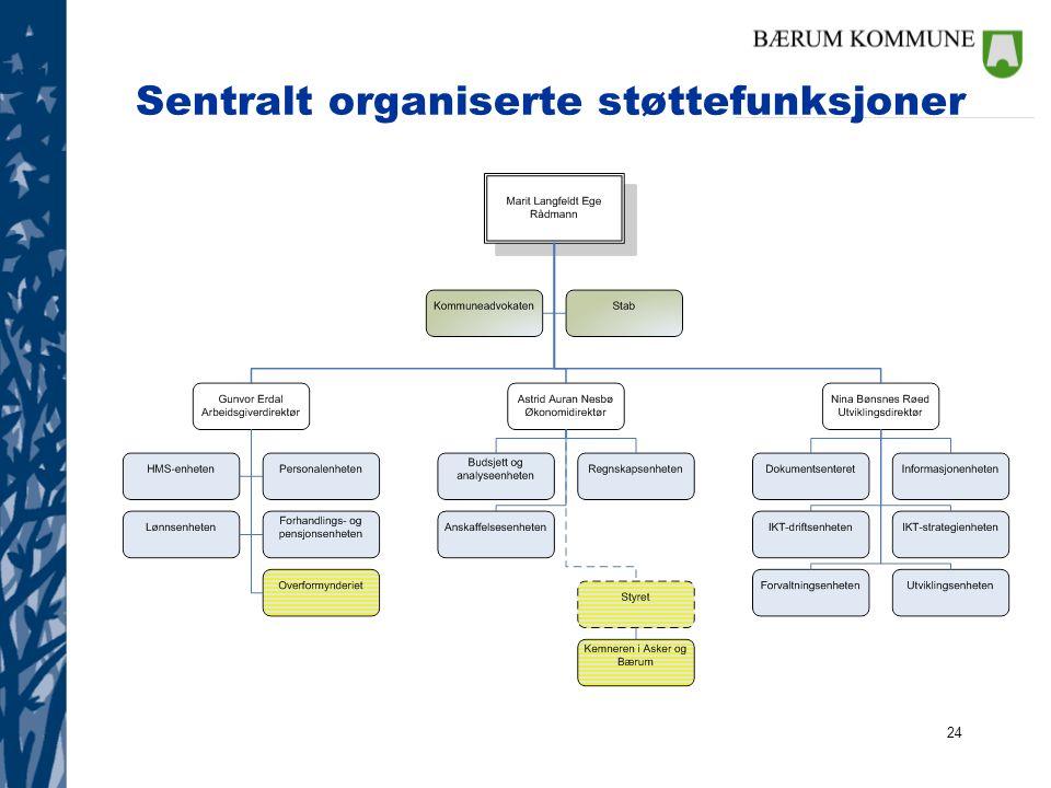 Sentralt organiserte støttefunksjoner