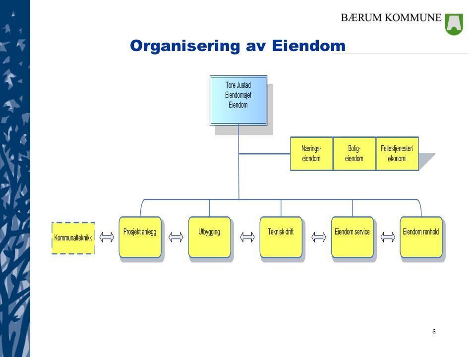 Organisering av Eiendom