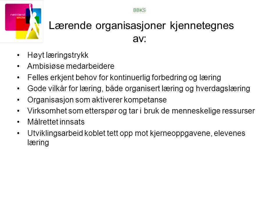BBKS Lærende organisasjoner kjennetegnes av: