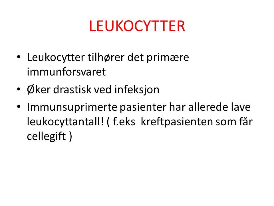 LEUKOCYTTER Leukocytter tilhører det primære immunforsvaret