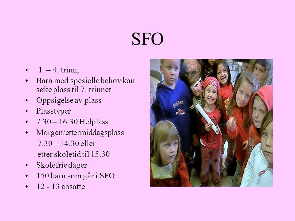 SFO 1. – 4. trinn, Barn med spesielle behov kan søke plass til 7. trinnet. Oppsigelse av plass. Plasstyper.