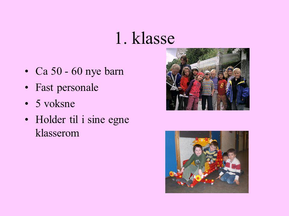 1. klasse Ca 50 - 60 nye barn Fast personale 5 voksne