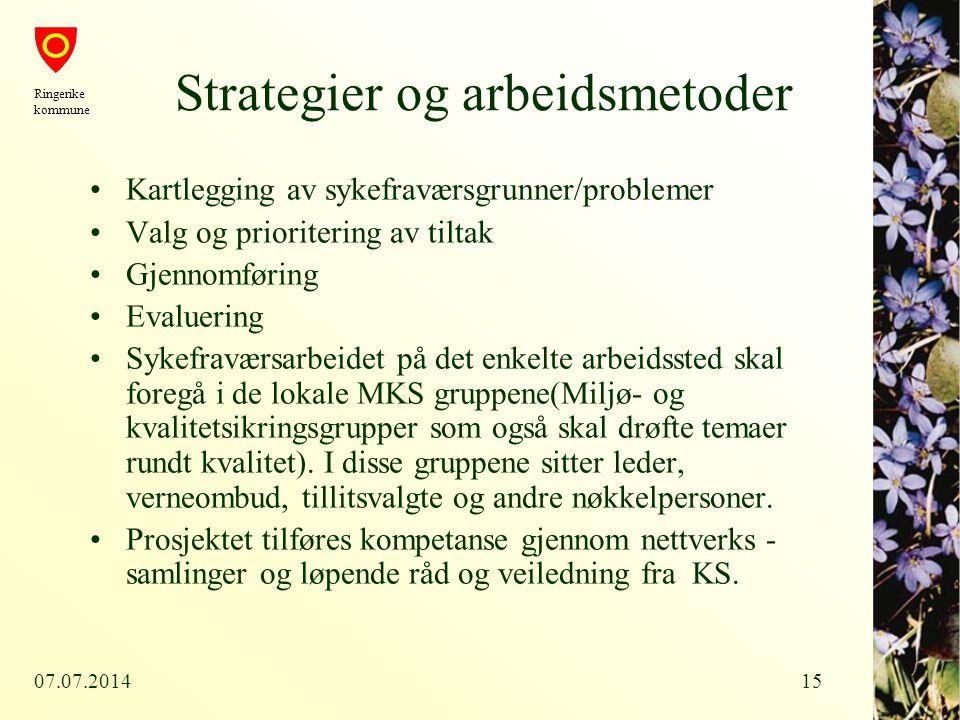 Strategier og arbeidsmetoder