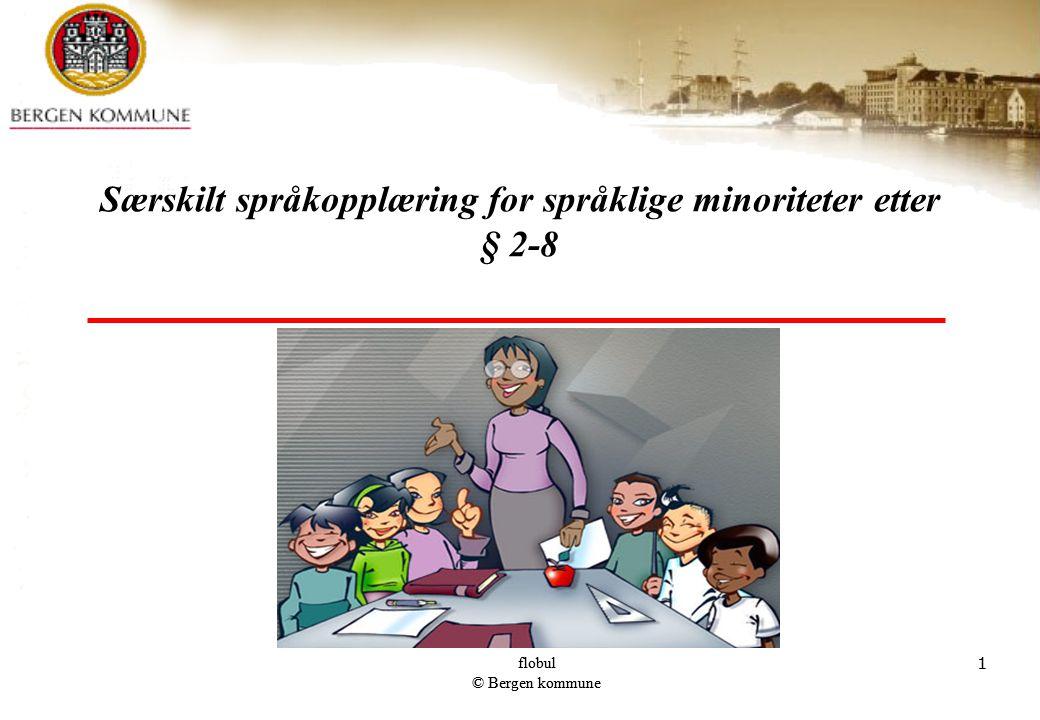 Særskilt språkopplæring for språklige minoriteter etter § 2-8