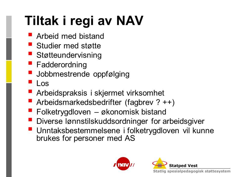 Tiltak i regi av NAV Arbeid med bistand Studier med støtte