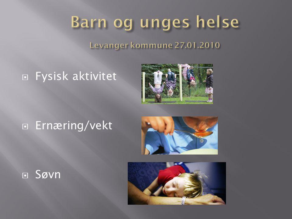 Barn og unges helse Levanger kommune 27.01.2010