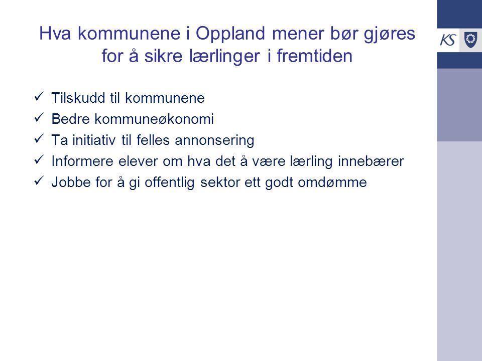 Hva kommunene i Oppland mener bør gjøres for å sikre lærlinger i fremtiden
